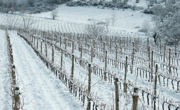 Le Fonti im Schnee